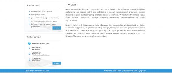 Strona główna – po lewej stronie skrócona oferta oraz dane kontaktowe, po prawej opis działalności firmy.