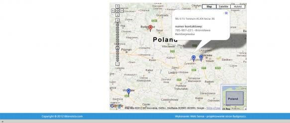 Mapka Google, na której umieszczone zostały filie firmy – po kliknięciu w znacznik uzyskujemy informacje kontaktowe danej filii.