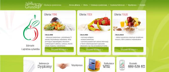 Strona główna – menu nawigacyjne, trzy boksy prezentujące ofertę firmy, poniżej cztery boksy będące odwołaniem do konkretnych podstron.
