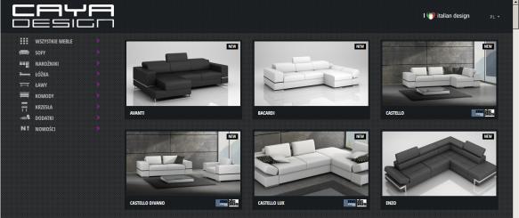 Katalog produktów – prezentacja produktów umieszczonych w wybranych kategoriach